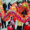 莱顿大学孔子学院与在荷华侨共庆蛇年新春