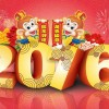 Chinese Nieuwjaarsviering weer terug in Rotterdam